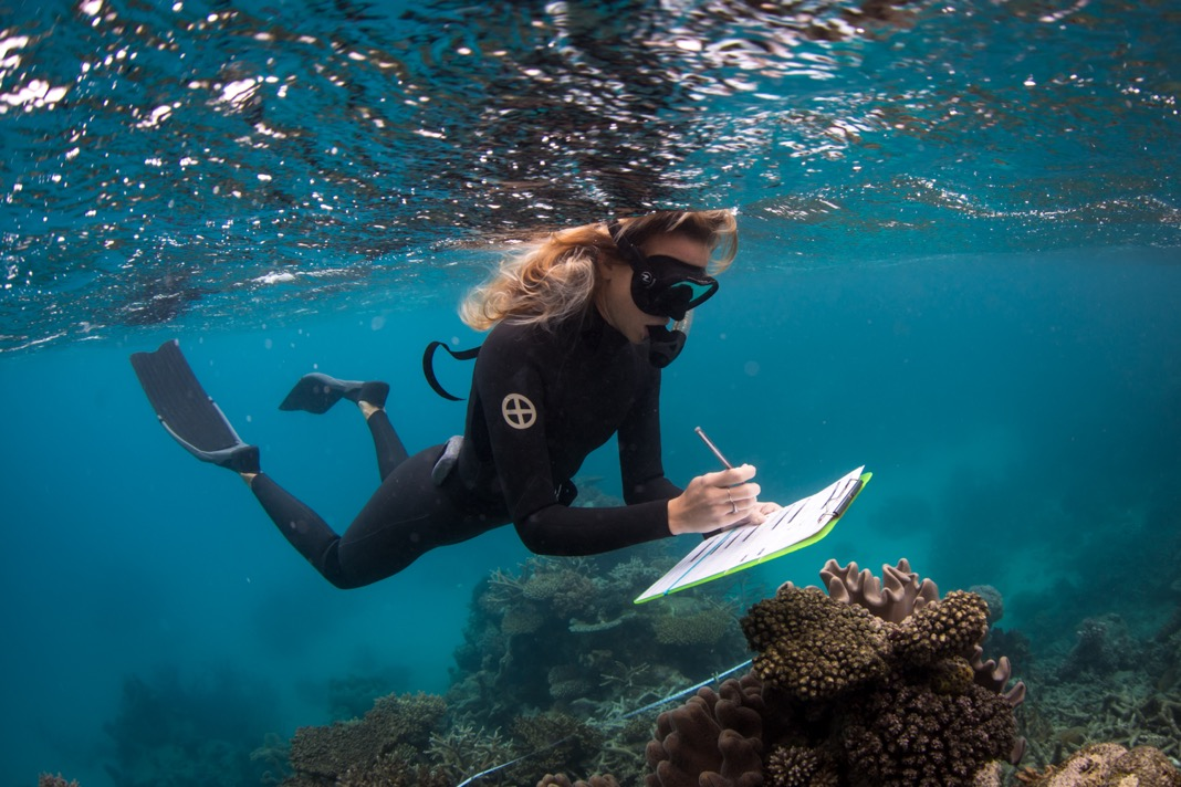 Marine biologist Taylor Simpkins completes a reef impact survey on the Great Barrier Reef to determine reef health. Photo © Brett Monroe Garner