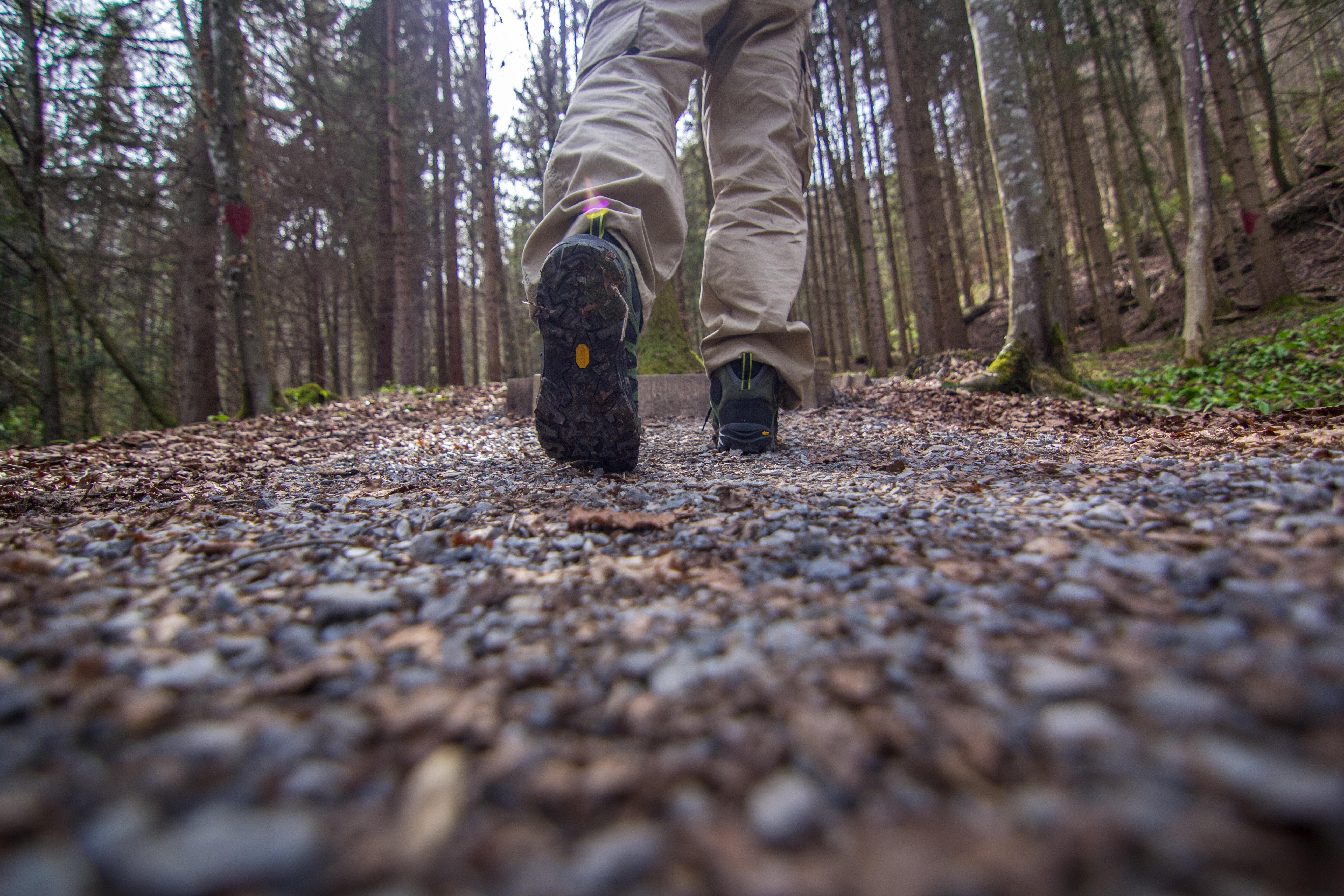 Kameng – the Mishmi Takin Hiking Boot