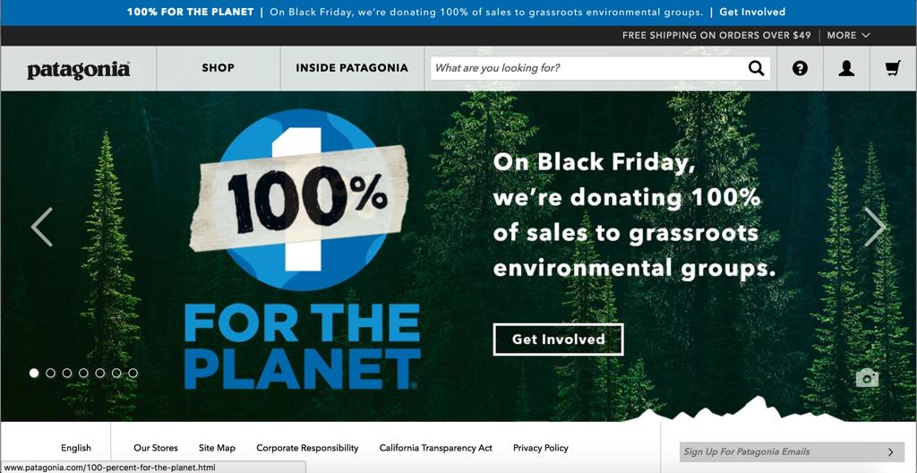 Screenshot of Patagonia Inc Homepage today